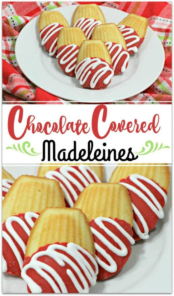 Chocolate Covered Madeleines