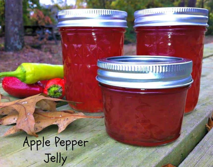 Apple Pepper Jelly Recipe