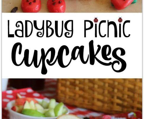 Ladybug Picnic Cupcakes